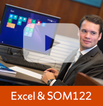 Excel and SOM